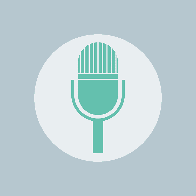 Android External microphone